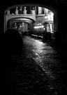 Arrivederci Roma by George Parapadakis (monocotylidono)