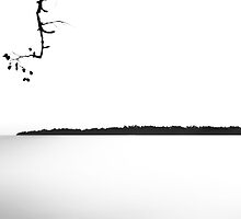 Finnish Silence. by Nikolaz Godet