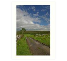 Irish Country Lane Art Print