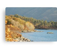 Gods Country Canvas Print