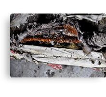rusty bed Canvas Print