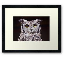 Big Eyes Framed Print