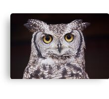 Big Eyes Canvas Print