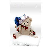 Erasmus Teddy Bear in snow Poster