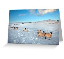 Not Frosties For Breakfast Again ! Greeting Card