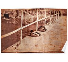Old Ducks - Chatting on the Bridge - Sepia Poster