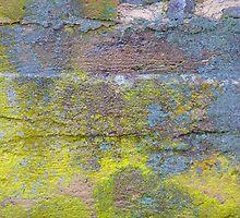 Colorful Cold Cellar Foundation  by clizzio