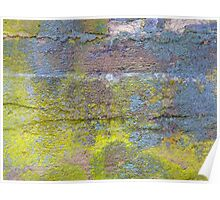 Colorful Cold Cellar Foundation  Poster