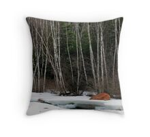 Thaw at Jack Pine River Throw Pillow
