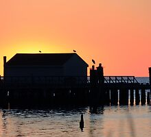 Pump House Silhouette by Timothy Gass