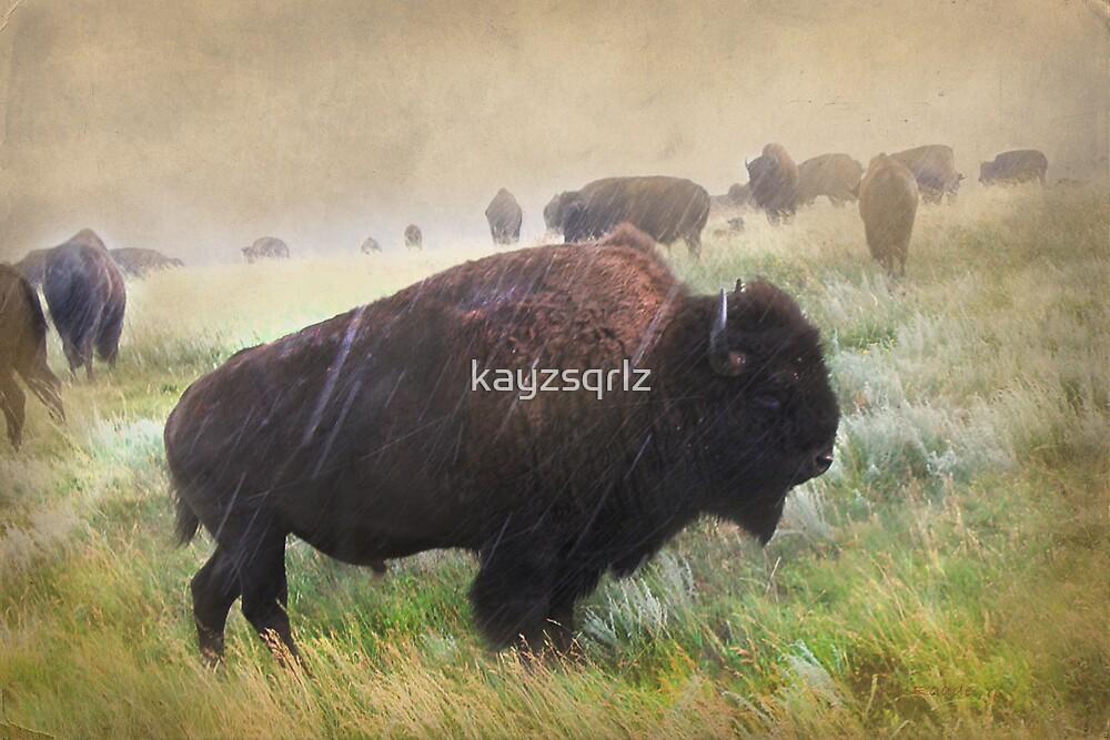 It's Raining Bison by Kay Kempton Raade