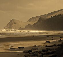 A Friend, A Walk, The Coast At Lincoln City by USGolfers