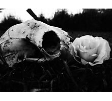 Beautiful Death Photographic Print