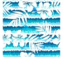 White flowers on blue painted stripes Photographic Print