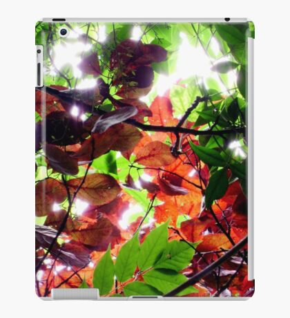 Enchanted iPad Case/Skin