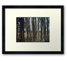 Touch Wood Framed Print