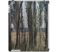 Touch Wood iPad Case/Skin