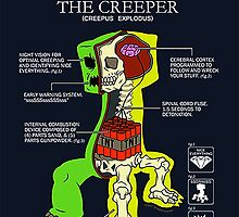 Creeper Anatomy by imLXZ