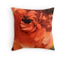 Beyond a Red Shadow of a Doubt Throw Pillow