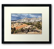 Split Mountain with Dead Wood Framed Print