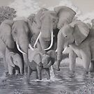 Future Matriarch - African Elephants by Heather Ward