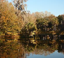 Chestnut Park, Tarpon Springs Florida by FacetEyePhoto