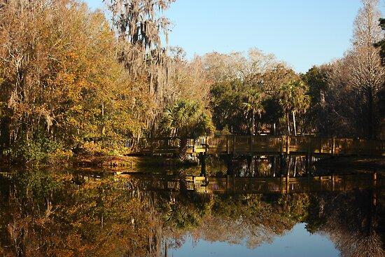 Chestnut Park, Tarpon Springs Florida by FacetEyePhoto