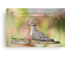 Be wise as serpents and innocent as doves . . . Canvas Print