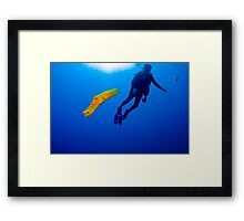 Yellow Phased Trumpet Fish Framed Print