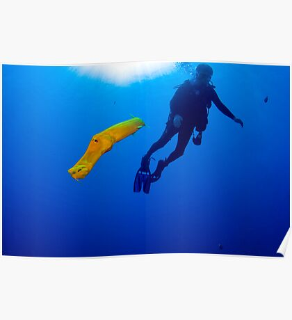 Yellow Phased Trumpet Fish Poster