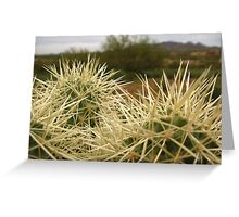 Sonoran Scenery Series ~ 5 ~ Greeting Card