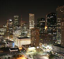 Houston Downtown by Alexander Davydov
