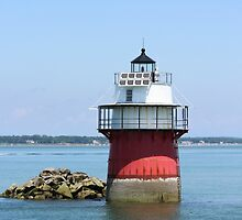 Bug Light the Vertical Look by Linda Jackson