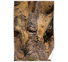 Gnarly Wood! Poster