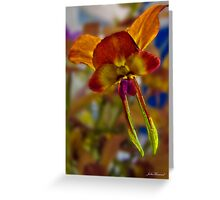 Donkey Orchid, Duris Greeting Card