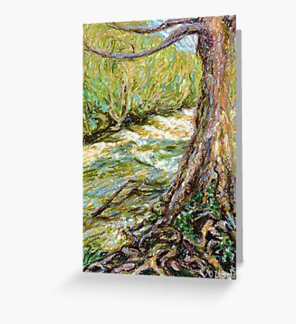 River Hafren (Severn) in September Greeting Card