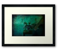The Last of the Summer Roses Framed Print
