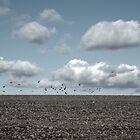 winter landscape by lukasdf