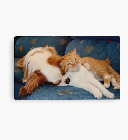 cat and dog Canvas Print