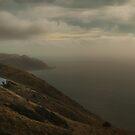 Mist, All Over His Private Ocean by Peter Kurdulija