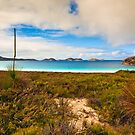 Lucky Bay by aabzimaging
