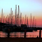 Boats at Home in Coffs Harbour, Australia by Alfredo Estrella
