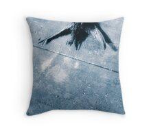 17.3.2010: Cold Sky Throw Pillow