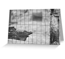 The chicken coop-Last days on the farm Greeting Card