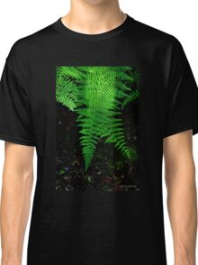 Ferns in the Light Classic T-Shirt