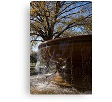 Water Curtains and Autumn Sunshine Canvas Print