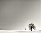 Casting a shadow on the landscape by clickinhistory