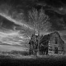 Air of Evening by Rodney  Harvey