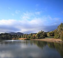 Thorndon Park Reservoir by BBCsImagery