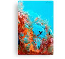 Pillow Lava Canvas Print
